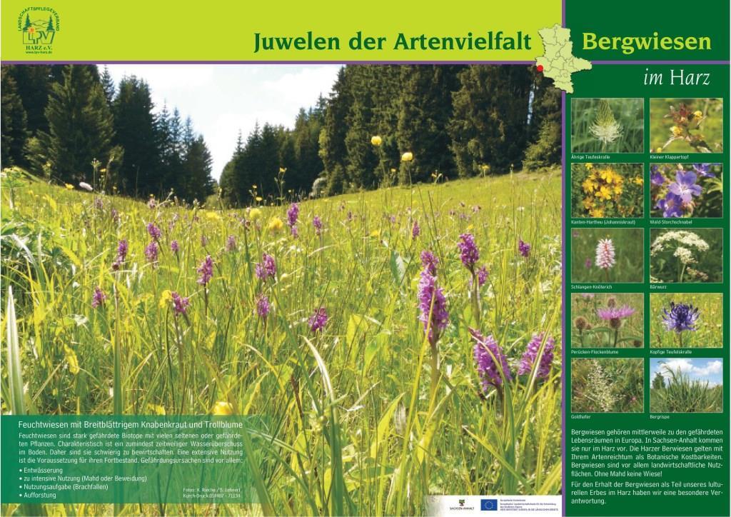 Plakat 'Juwelen der Artenvielfalt'