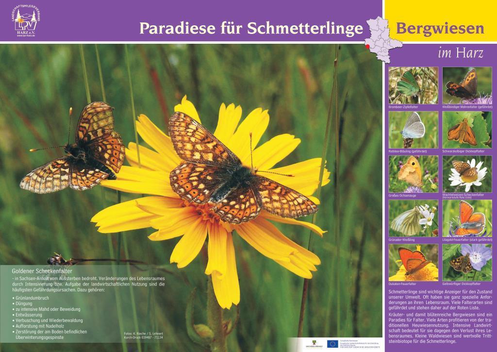 Plakat 'Paradies für Schmetterlinge'